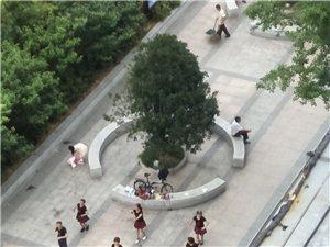 广场舞能不能不要凌晨五点那里放音乐咚咚咚