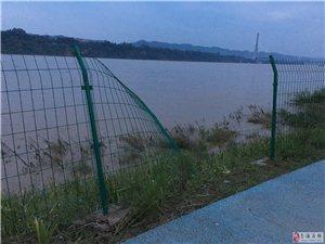 江边被撕裂的护栏
