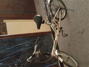 自行车出售,以前是骑着上班的,现换了电动车,因此闲置下来,有需要的朋友可以联系我,