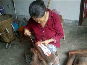 地地道道的农村人想找一份照顾老年人的工作