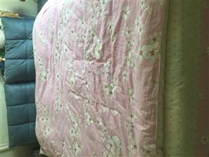 9.5成的1.8*2.0米的床,带两个床头柜和床垫,低价出售,有意者联系,价钱可以商量电话:1899...