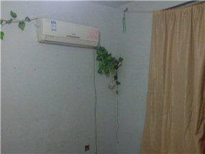 亿鑫苑3室1厅1卫700元/月