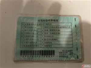 谁的驾驶证