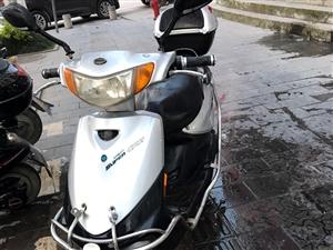 金沙国际网上娱乐8.5新电动车一辆,爱玛的,5个电池!车况很好很新!