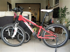 捷安特 giant xtc 24青少年山地自行车 没用几次放了一年了,都长蜘蛛了,哈哈,因为住的步行...
