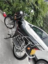 自用车,刚入手一个月的新车,铃木ga150,无任何擦挂,摔倒,两千公里不到,车况巅峰状态,车况完全不...