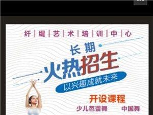 暑假芭蕾舞、中國舞考級集訓班優惠價