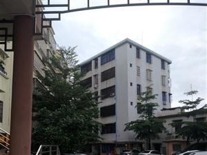 海桂公寓人口之家4室1厅1卫39万元