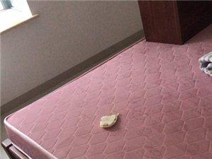 出售两张1米8床垫,98成新,基本没睡过,一张200,两张300,自提地点大印经典7楼