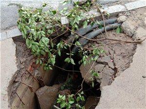 霍家庄路口农商行门口井盖塌了