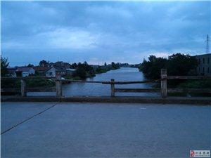 大桥说:我的胳膊早就断了,无人关注。