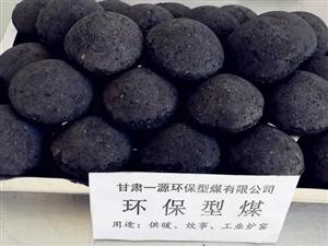 甘肃一源环保型煤有限公司