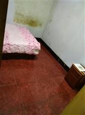 东篱路179号3室1厅1卫400元/月
