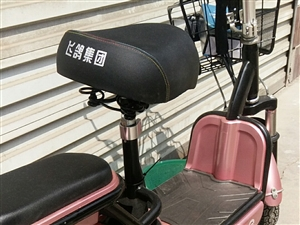 全新,踏板式电动车,低价出售,含全新电瓶,48伏,13831086337