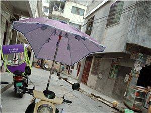新装的伞   个人原因 急售