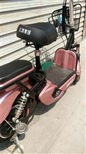 全新,踏板式电动车,低价处理,含新电瓶,13831086337
