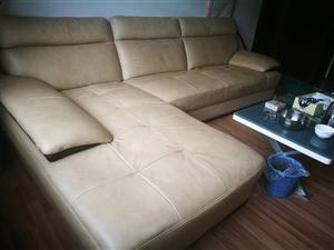 顾家家居的皮沙发,购入四年,放置两年,使用一年半,原价一万二,右手卧榻,品相良好,无刮擦,带沙发罩一...