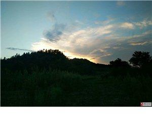 山里飞来了一只金凤凰
