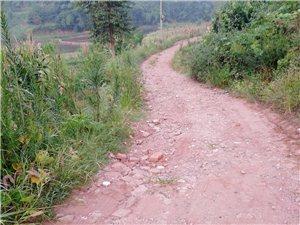 富顺这条烂公路何时才能修哟?