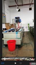 注册免费送白菜金网站登云兴达工业园区某个黑加工厂有毒物质危害平民