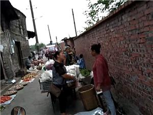 富顺有人占街道两边收取卖菜农民的地摊费,请问合理吗?