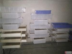 黄粉虫金沙国际网上娱乐(幼虫)有25盒幼虫。电话联系。13971878624