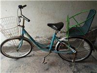 凤凰牌女士自行车,放在仓库里一直没怎么用过,轮胎毛都还有,接送孩子、上下班和买菜都可以。