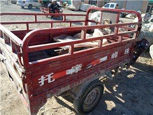 珠峰150三轮车出售