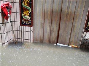 下雨,睢县到处都是水!