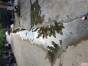 尖岭东新街常年积水