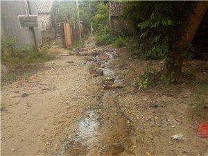 儋州市新州镇大屯村委会高田村村里积水严重