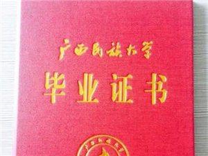 小学或初中毕业都可报名广西函授升学历
