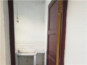 城区3室1厅1卫800元/月