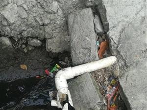 自来水管四年前已铺好,至今滴水未通。