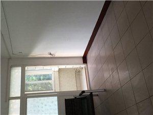 武功县城文艺北路3室一厅住房出租