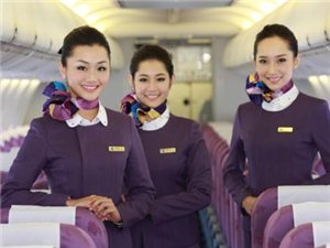 北京新机场岗位 需求地方市场运营 招募代理
