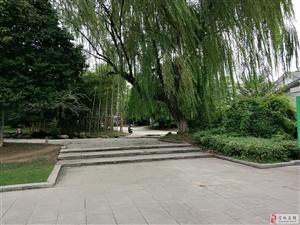 浙江省安吉县行政广场(暨政府广场)