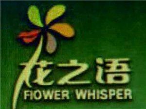 武都花之语鲜花店
