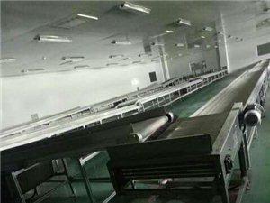十一团国有大型红枣加工厂