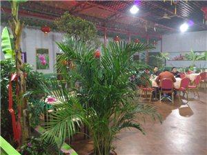 """绿色生态""""莲香庄园饭庄""""喜迎圣诞、为答谢新老顾客对本店的支持与厚爱、特推出啤酒买一送一、热菜点二道可"""