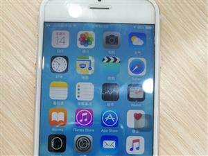 金色苹果6全网通