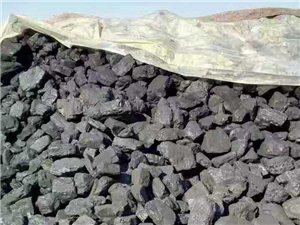 长年销售坝后煤,东胜煤。