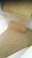 红藜麦,黑藜麦,白藜麦种子