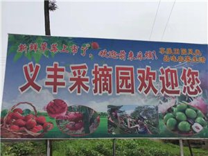 草莓园优惠价