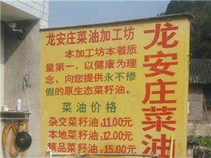 龙安庄菜籽油加工坊菜油批发
