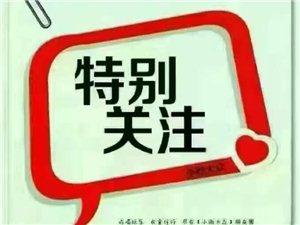 英材家教英语特色辅导班