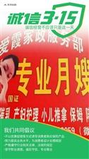 爱霞专业月嫂服务中心