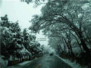 《三月雪》