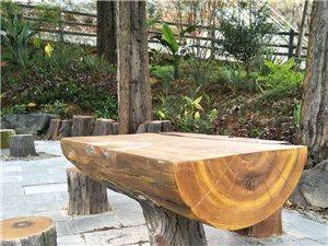 承接水泥仿真木制作