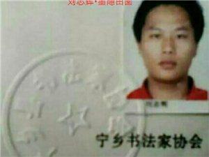 书法家教13142113089刘老师